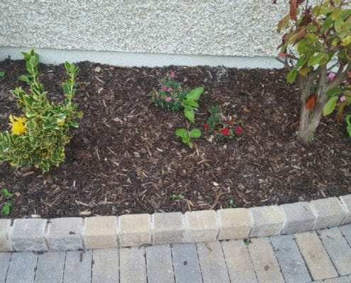 landscaping-and-garden-design-Dublin-IMG_6020.jpg